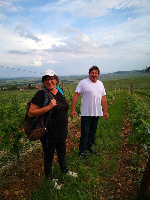 Dans les vignes du Domaine Hartmann